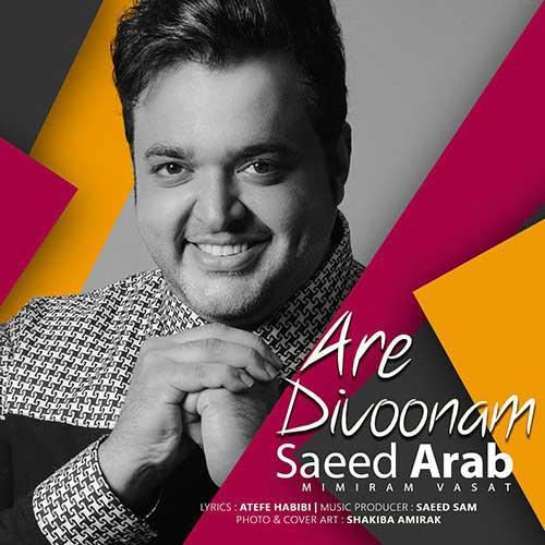 Saeed%20Arab%20 %20Are%20Divoonam - دانلود آهنگ جدید سعید عرب آره دیوونم