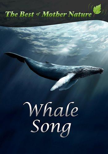 دانلود آهنگ تنهاترین نهنگ دنیا Whale از Iday