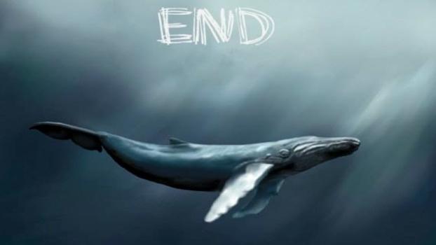 دانلود آهنگ نهنگ آبی مرحله آخر